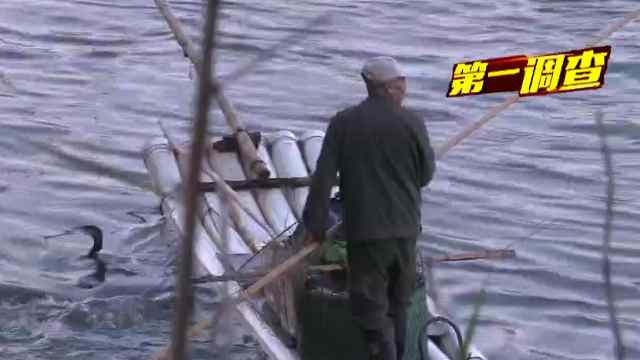 又一例非法电鱼现象在建瓯发生!