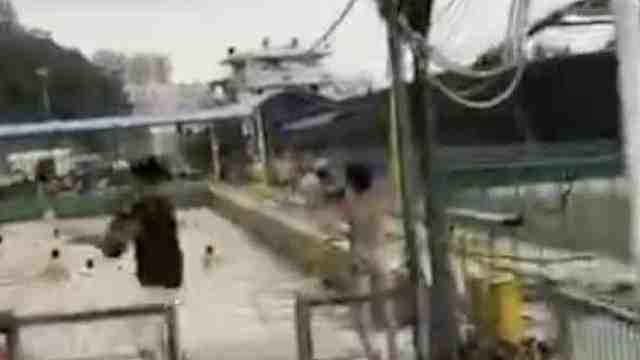 货船碰撞水上游泳场,游客惊慌逃离