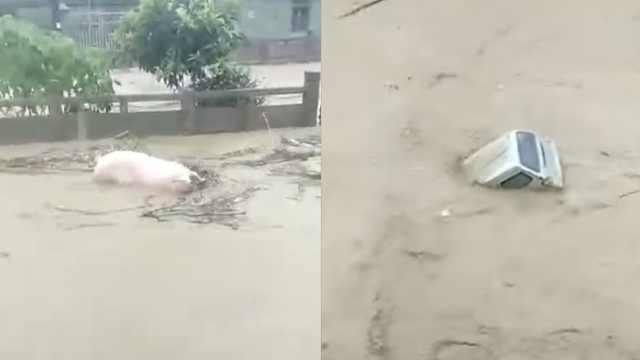 福建南平遇强降雨,桥梁车辆被冲走