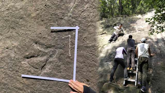 重庆发现侏罗纪早期肉食龙足迹化石