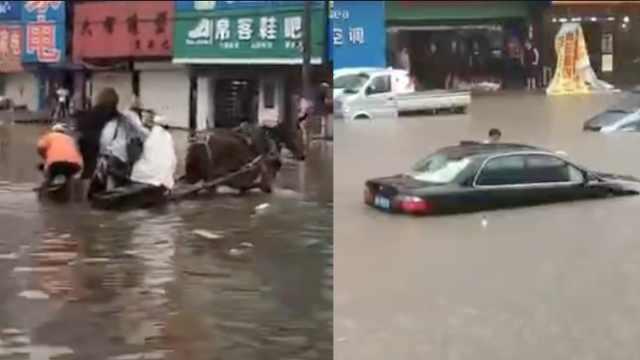 保定暴雨淹城,汽车趴窝市民乘驴车