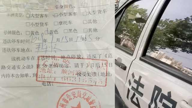 法院警车违停被交警贴罚单:受罚