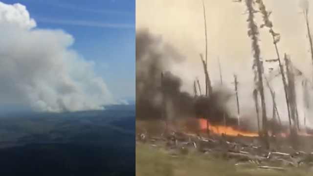 西伯利亚爆发山火面积270万公顷!