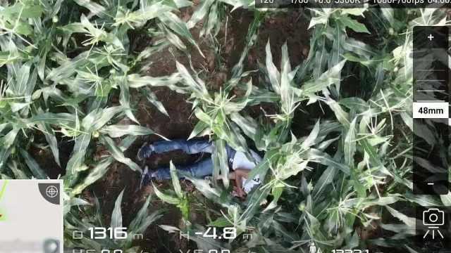 警方确认!黑龙江在逃嫌疑人已自杀