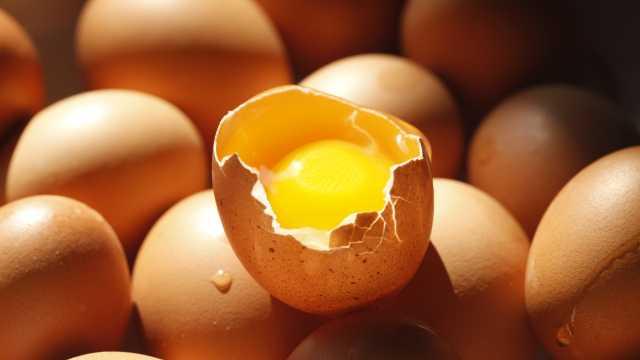 中英科学家:一天吃一个蛋有益心脏