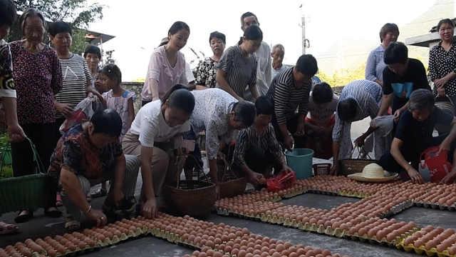 村花收到8888个鸡蛋,当礼物送村民