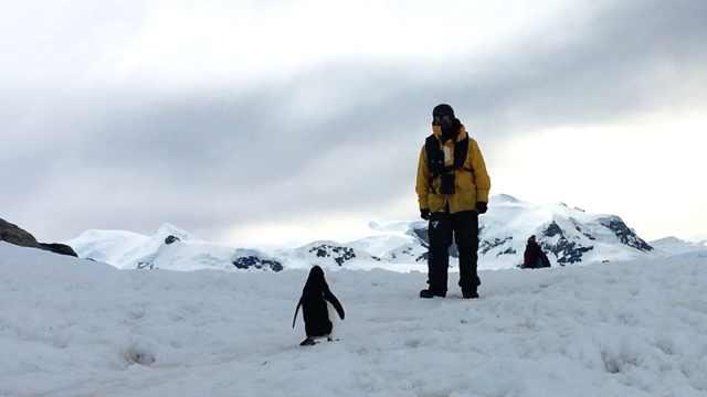 女硕士探险南极:我受不了朝九晚五