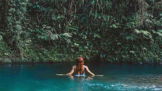 澳洲熱帶雨林,探秘世界最初的樣子