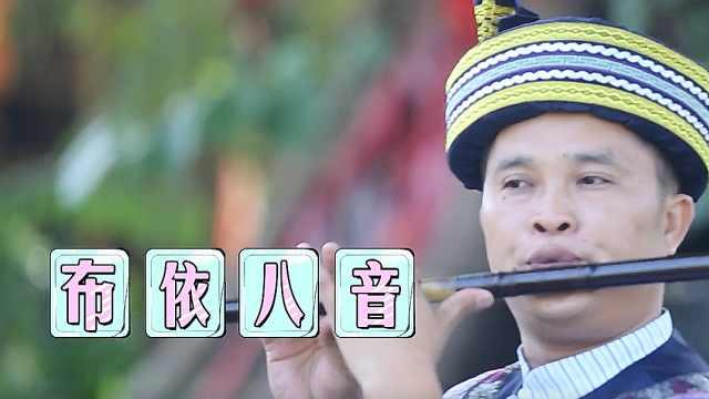 布依族谈情说爱传承技艺:八音坐唱