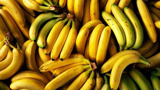 研究:全球变暖或致2050年香蕉消失