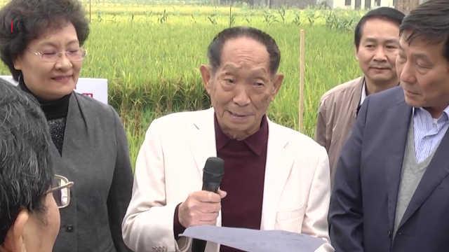 改变世界的杂交水稻
