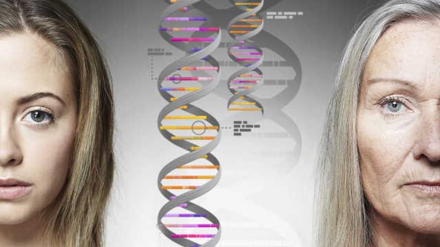 逆轉衰老試驗:受試者平均年輕2歲