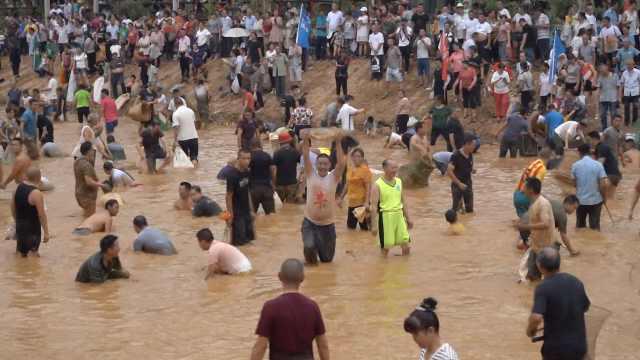 千人湿身上演浑水摸鱼,瓜分10吨鱼