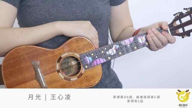 王心凌 《月光》尤克里里弹唱教学