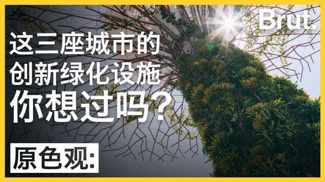 这三座城的创新绿化设施你想过吗?