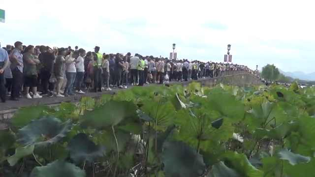 国庆西湖断桥变人桥,游客:wifi挤断