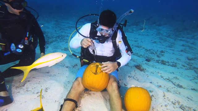 美国佛罗里达举办水下南瓜雕刻大赛