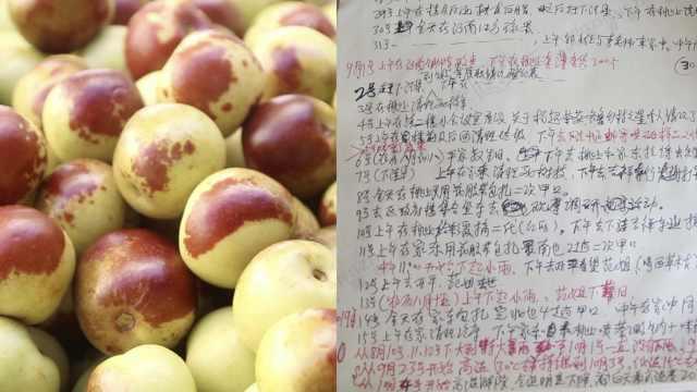 大叔为冬枣写日记23年,年入40多万
