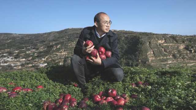 帮甘肃老家卖苹果,潘石屹买10万斤