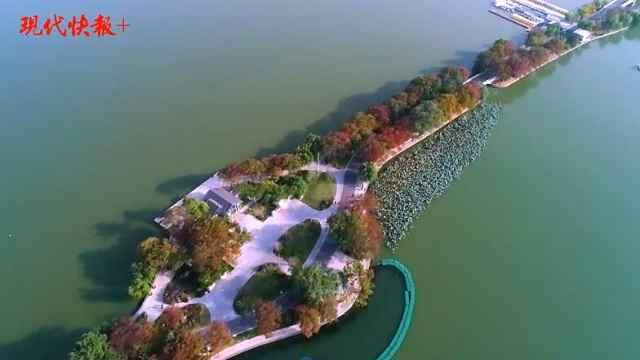 南京的秋天还有这条台菱堤让人心醉