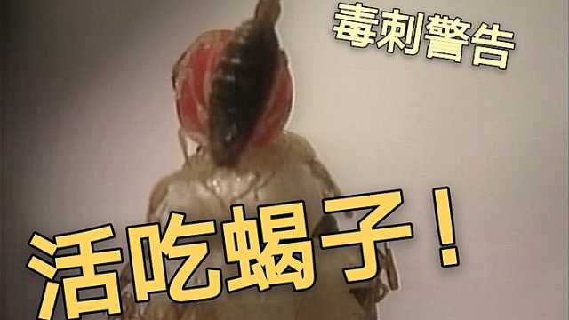 蝎子刺身?西安餐馆吃有毒的活蝎