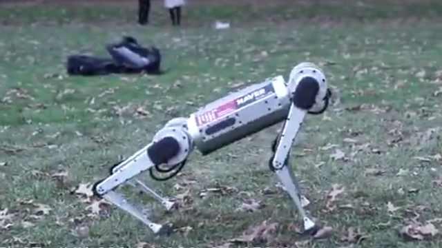 """麻省理工""""迷你獵豹""""機器人"""