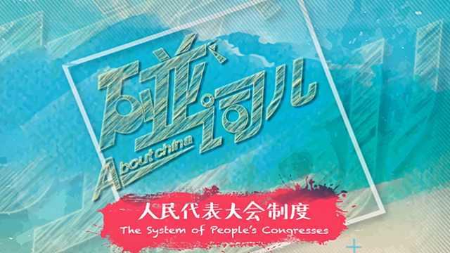 人民代表大会制度