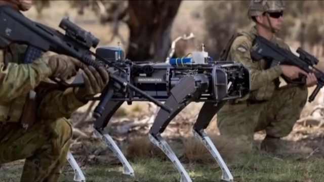 澳大利亚测试机器狗,将可用于战争