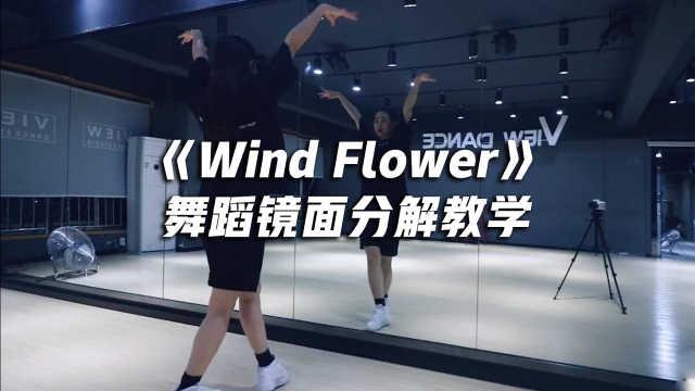 《Wind Flower》舞蹈镜面分解教学