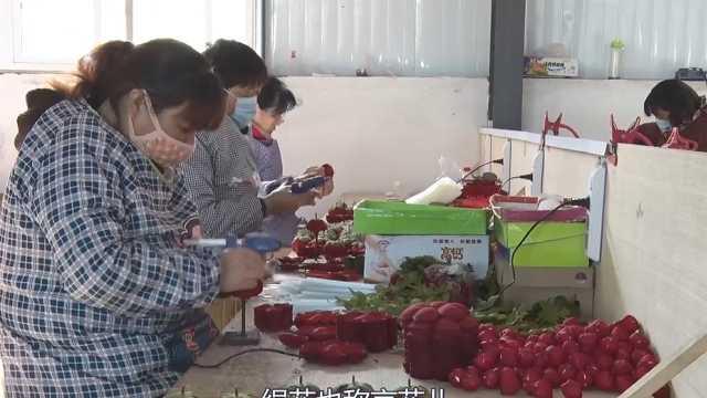 叶县这个村制作的绢花出口到了欧洲
