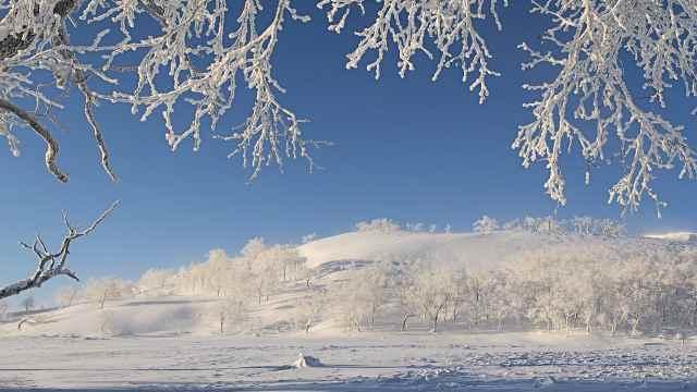 直播:冰雪奇缘!吉林雾凇的童话世界