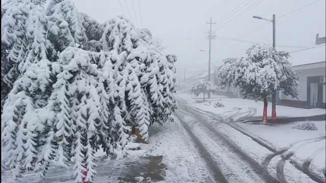 2020初雪降临韩城