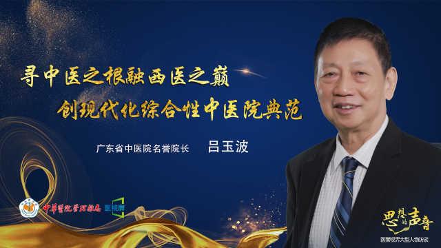 广东省中医院名誉院长吕玉波专访