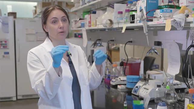 纳米技术治疗癌症,真的能实现吗?