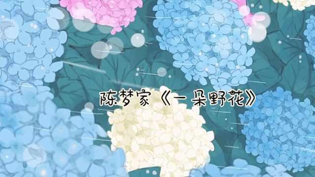 晚安江北:陈梦家《一朵野花》