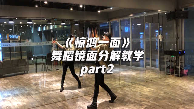 《惊鸿一面》舞蹈分解教学part2