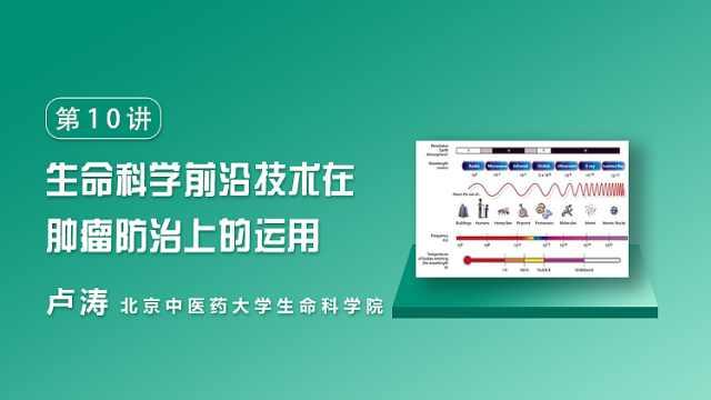 卢涛:生命科学在肿瘤防治上的运用