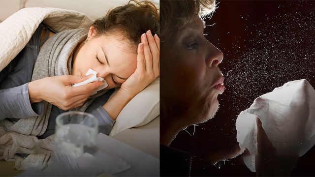 流感病毒能在物体表面上停留多久?