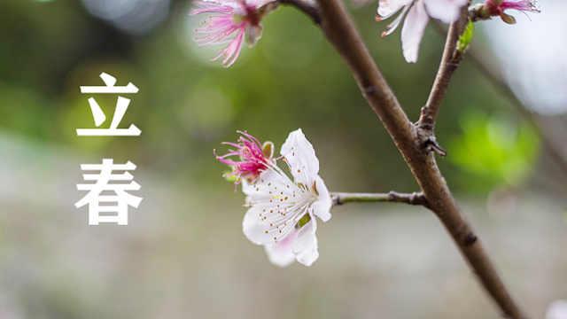 立春:希望在悄无声息中酝酿