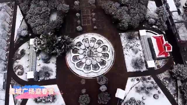 鹰城广场迎春雪