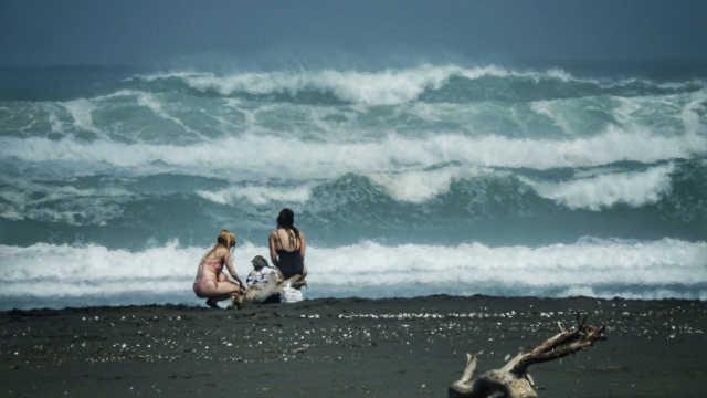 奥克兰西海岸,狂野黑沙滩