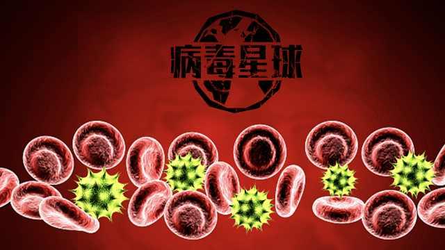 科普:捐血浆和捐全血有何不同?