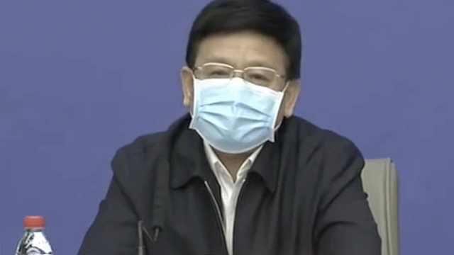 王贺胜:已派出3支国家中医医疗队