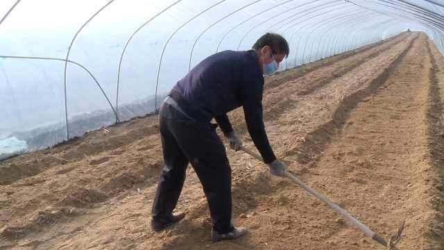 农民戴口罩种地:春耕和防控两不误