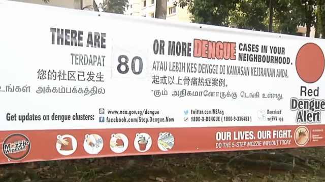 新加坡一病人同时患新冠肺炎登革热