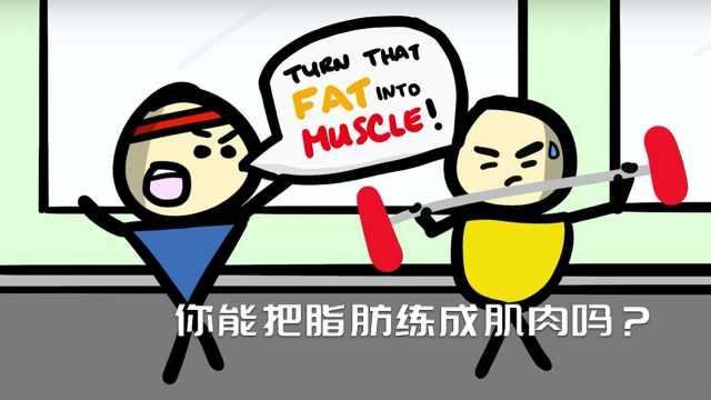 你能把脂肪练成肌肉吗?