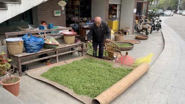 疫袭西湖龙井龙坞村:采购商减少致茶叶滞销,价格拦腰斩