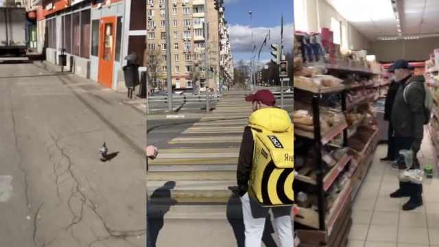 在他乡|在俄留学生劝同胞尽量不回国:要在这里宅出天际