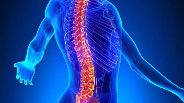 第3节:腰腿痛的体检要点