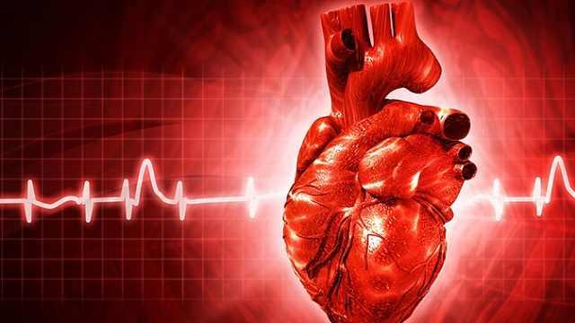 第9节:心脏疾病的诊断要点